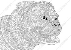 Bulldog Boxer Dog Coloring Page. Adult by ColoringPageExpress