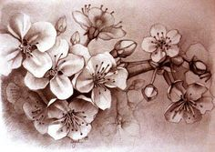 """""""Cherry blossom"""" by liga-marta on deviantART (http://liga-marta.deviantart.com/)"""