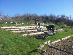 working in the gardens