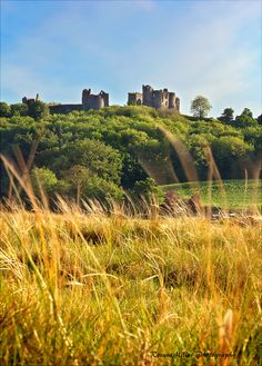 Llansteffan Castle | by Rosane Miller Wales UK Wales Uk, Cymru, Monument Valley, Fields, Britain, Vineyard, England, Towers, Places