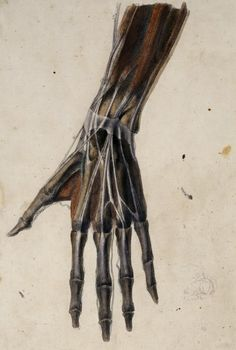 by benjamin robert haydon, 1805.