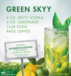 1000 images about skyy vodka cocktail recipes on for Green cocktails with vodka