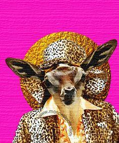 My Cheetah Suit