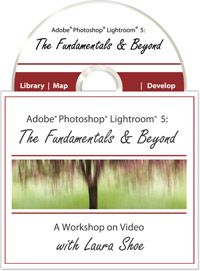 """Help! My Photos Are Completely Unorganized and Lightroom is a Mess. How can I just start all over?"" 