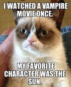 i wantched a movie about a guy who shaved cats....... my fave charactor was the raiser!!!! # im so evil!