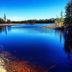 We love the colors in this shot of the Thunder Bay River in shared by Thanks for sharing! State Of Michigan, Detroit Michigan, Outdoor Photography, Nature Pictures, Folklore, Natural Beauty, Legends, Scenery, Places To Visit