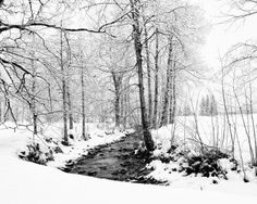 Google Image Result for Truemmelbach-Falls-Lauterbrunnen-Switzerland--winter-2009