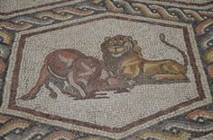 While building a visitor's center dedicated to the famous Lod mosaic, construction workers have uncovered yet another impressive Roman mosaic.