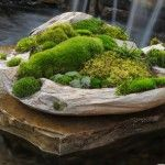 moss and stone garden from moss stone