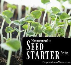 Homemade seed starter pots   PreparednessMama