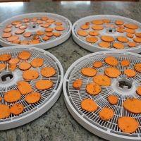 Dehydrator Recipe: Sweet Potato Chips