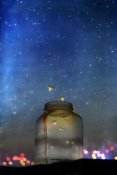 We would catch lightning bugs & poke holes in a mason jar lid... Fireflies magical-nature  ( do you remember when you asked your mom for a jar so you could catch lightning bugs and then she would set them free while we slept :)