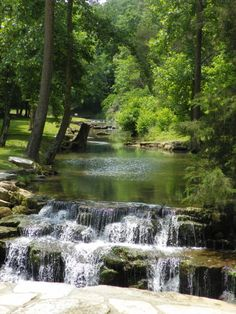 Dogwood Canyon Nature Park Info   Lampe, MO | Big Cedar Lodge/Dogwood  Canyon | Pinterest | Park