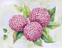 Hydrangeas-JP3880 by Jean Plout
