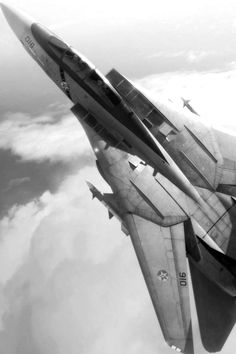 F-14 Forgotten Nobility... My Dad worked on the design of the Tom Cat- it's like a part of our family