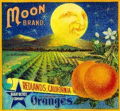 Redlands Moon Orange Citrus Fruit Crate Box Label