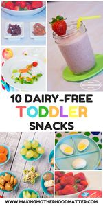 #ad Find our favorite recipes for the best 10 dairy free toddler snacks. These are not only easy to make, but these yummy snacks will teach your child how to make healthy eating choices. Tap the link to see all 10 recipes. @Meijer @LoveMySilk @So_Delicious @Vega_team #plantbasedgoodness #getplantinspired #toddler #snacks #toddlerlife #healthy #dairyfree