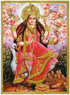 Maa Chandi is the total energy of the universe. Mother Goddess, Goddess Lakshmi, Jai Mata Di Photo, Maa Wallpaper, Kali Mata, Hindu Deities, Hinduism, Shiva Shakti, Krishna Images