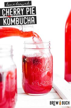 This cherry kombucha is packed with sweet cherries and fragrant vanilla making for a delicious kombucha flavor you'll love! Fermentation Recipes, Homebrew Recipes, Kombucha Fermentation, Kombucha Brewing, Blueberry Kombucha, Green Tea Kombucha, Kombucha Flavors, Kombucha Recipe, Kefir
