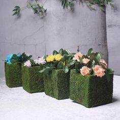 4 Pack – Square Preserved Moss Planter Boxes – Moss Covered Flower Basket Planter with Inner Lining – x - Modern Flower Basket, Flower Pots, Square Planter Boxes, Green Wedding Decorations, Christmas Decorations, Moss Decor, Basket Planters, Planters Shade, Fall Planters