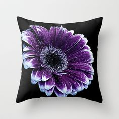 Purple Daisy with Water Droplets Throw Pillow by F Photography and Digital Art - $20.00