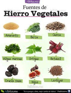 Fuentes de Hierro Vegetales