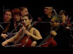 Concert Tudor Gheorghe - Degeaba - 2011 - Integral