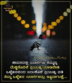 Inspirational Good Night Messages, Powerful Motivational Quotes, Best Inspirational Quotes, Status Quotes, Attitude Quotes, Life Quotes, Short Friendship Quotes, Swami Vivekananda Quotes, Life Is Precious