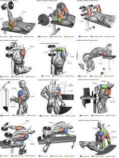 Shoulder Workout Routine To Add Serious Size To Your Shoulders. How To Get The Most Out Of This Shoulder Workout. Moving your muscle Shoulder Workout Routine, Best Chest Workout, Workout Routine For Men, Chest Workouts, Weight Training Workouts, Fitness Workouts, Training Plan, Strength Training, Fitness Legs