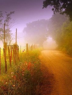 country road-
