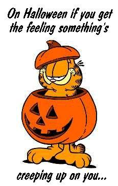 A Garfield Halloween Garfield Halloween, Garfield Birthday, Halloween Gif, Spirit Halloween, Happy Halloween, Garfield Cartoon, Garfield And Odie, Garfield Comics, Dallas Cowboys Posters