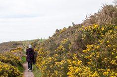 Ballycotton Cliff Walk   9 Stunning Coastal Walk in Ireland