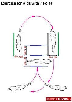 Horse Ground Pole Exercises