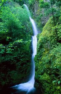 Columbia River Gorge, Troutdale Oregon. Hiking.
