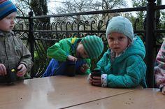 Nauka przez zabawę :) Zielone warsztaty ogrodnicze dla przedszkolaków zrealizowane przez ZielonaTerapia.pl