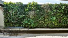 If you have limited outdoor space, don't assume that you're relegated to a few pot plants. A vertical garden may be the perfect solution. Small Gardens, Outdoor Gardens, Vertical Garden Wall, Vertical Gardens, May Garden, Small Outdoor Spaces, Home Vegetable Garden, Garden Spaces, Garden Inspiration