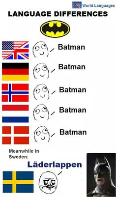 We in Sweden actually do say Batman. Never heard of ANYONE saying läderlappen. And if we would call hin something else then that would be fladdermudmannen. The correct translation of Batman. Funny Images, Funny Pictures, Learn Swedish, Terrible Jokes, History Memes, Wtf Funny, Funny Comics, Funny Posts, Words