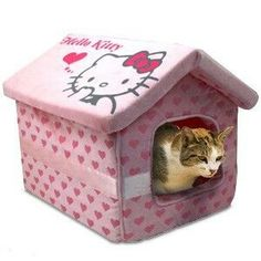 Hello Kitty Pet Bed - When I get my munchkin kitty.this is going to be (her) their bed. get some yourself some pawtastic adorable cat apparel! Hello Kitty House, Hello Kitty Items, Crazy Cat Lady, Crazy Cats, Kawaii Diy, Hello Kitty Collection, Hello Kitty Wallpaper, Weird Pictures, Weird Facts