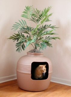 A litter box hidden in a planter, what a great idea!
