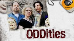 """Oddities - Mike & Evan run a store for antiques and oddities, with help from Ryan (who's talents with skulls are amazing).  The perfect place to decorate in what I call """"Natural History Museum Chic"""".  Lots of taxidermy, human remains, medical equipment... just like our library."""