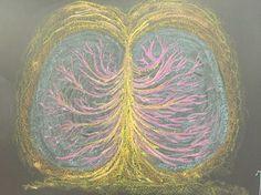 Respiratory system, physiology- chalkboard- grade 7 Waldorf