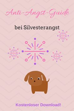 hund silvester beruhigungsmittel homöopathisch