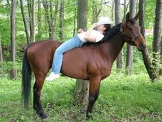 Senior Pictures with your horse