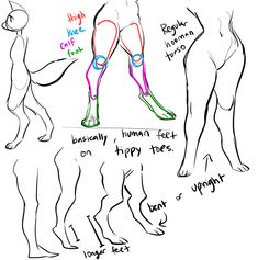 scribbled out a little digigrade leg thing for a bud, maybe you guys will find some use out of it too! Body Reference Drawing, Anatomy Reference, Art Reference Poses, Leg Reference, Drawing Base, Drawing Tips, Furry Art, Drawing Expressions, Poses References