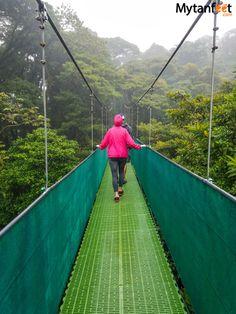 Things to do in Monteverde - Hanging bridges