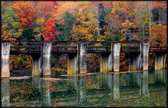 Burgess Falls Dam 2013: Photo by Photographer Patsy Dunn - photo.net Burgess Falls, Travel Ideas, Galleries, Bridge, Photography, Painting, Inspiration, Art, Bridges