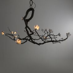 Hanging Lamps - David Wiseman - R & Company