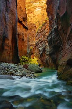The Narrows at Zion National Park | The Narrows (Zion National Park) photos (16)