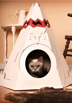 I kitty Teepee!!! This is definitely on my kitties christmas shopping list now.