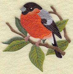 Bullfinch on Walnut Branch by StartingStitches on Etsy, $8.50